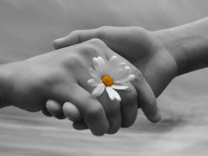 mani-con-fiore-donazione